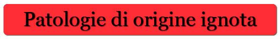 [cml_media_alt id='146']bottone1[/cml_media_alt]
